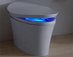 Toilet - Repair/Replacement